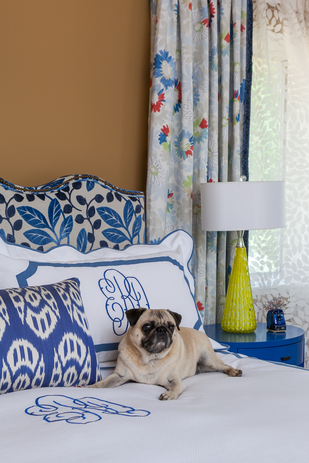 Louie the Frenchie in the master bedroom. - Fannie Allen Design