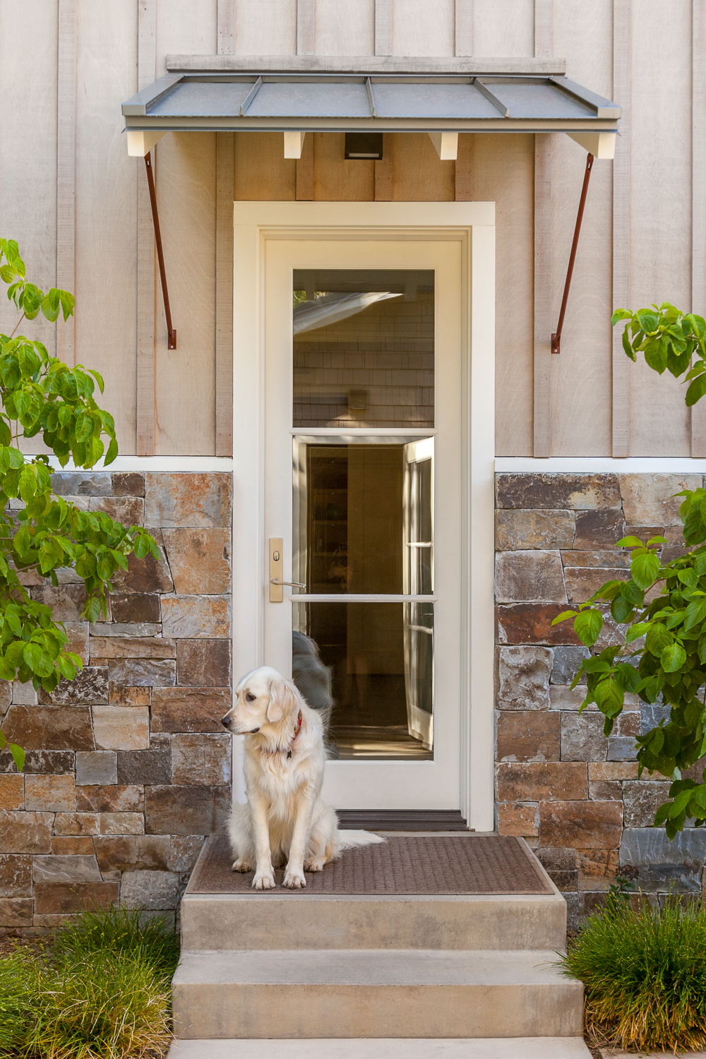 Starry in her Atherton garden at the backdoor. - Arterra Landscape architecture