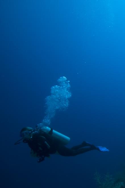 Hopkins SCUBA Diving Package -