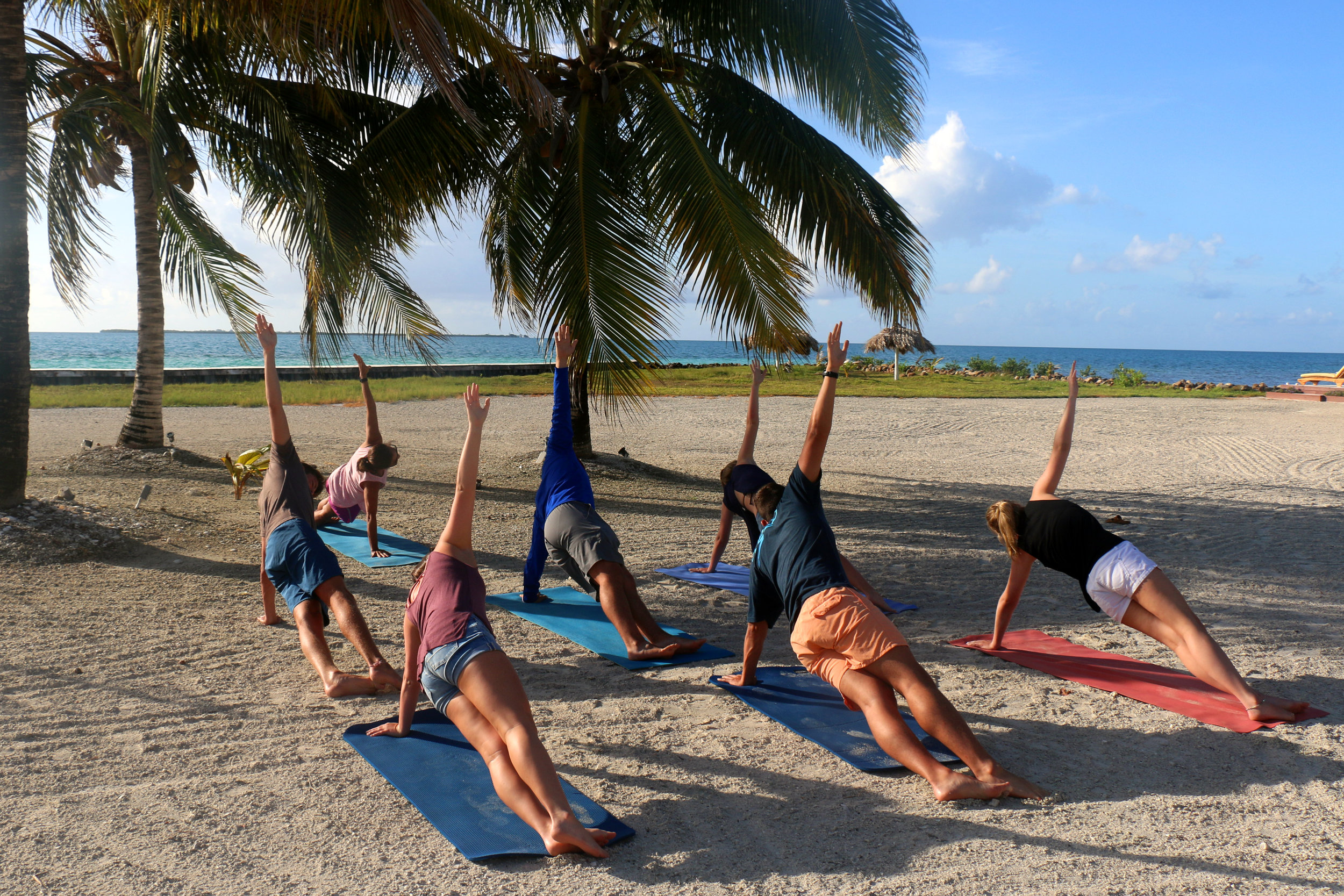 RB yoga.jpg