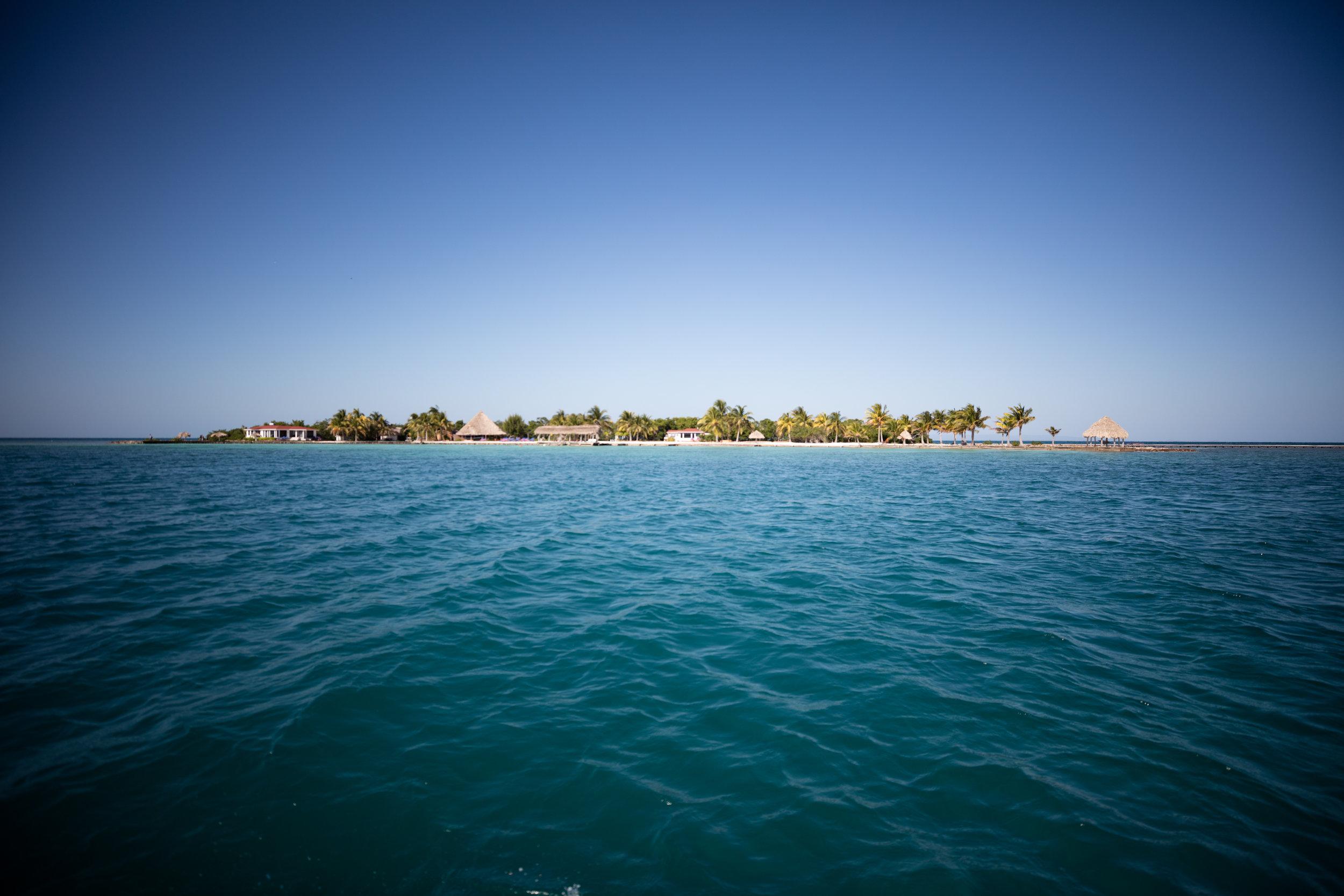 Copy of Royal Belize-3.jpg