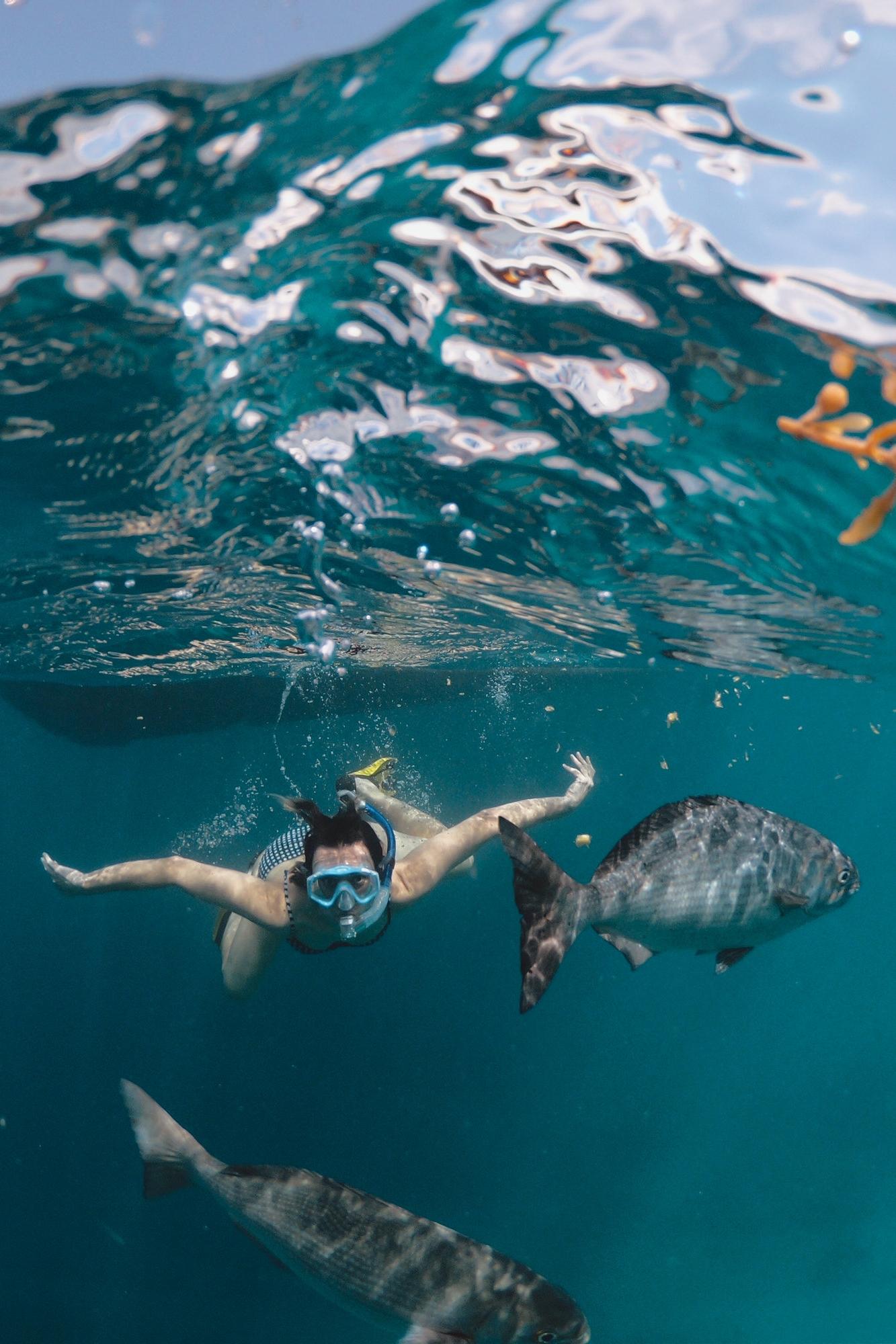 Snorkeling -