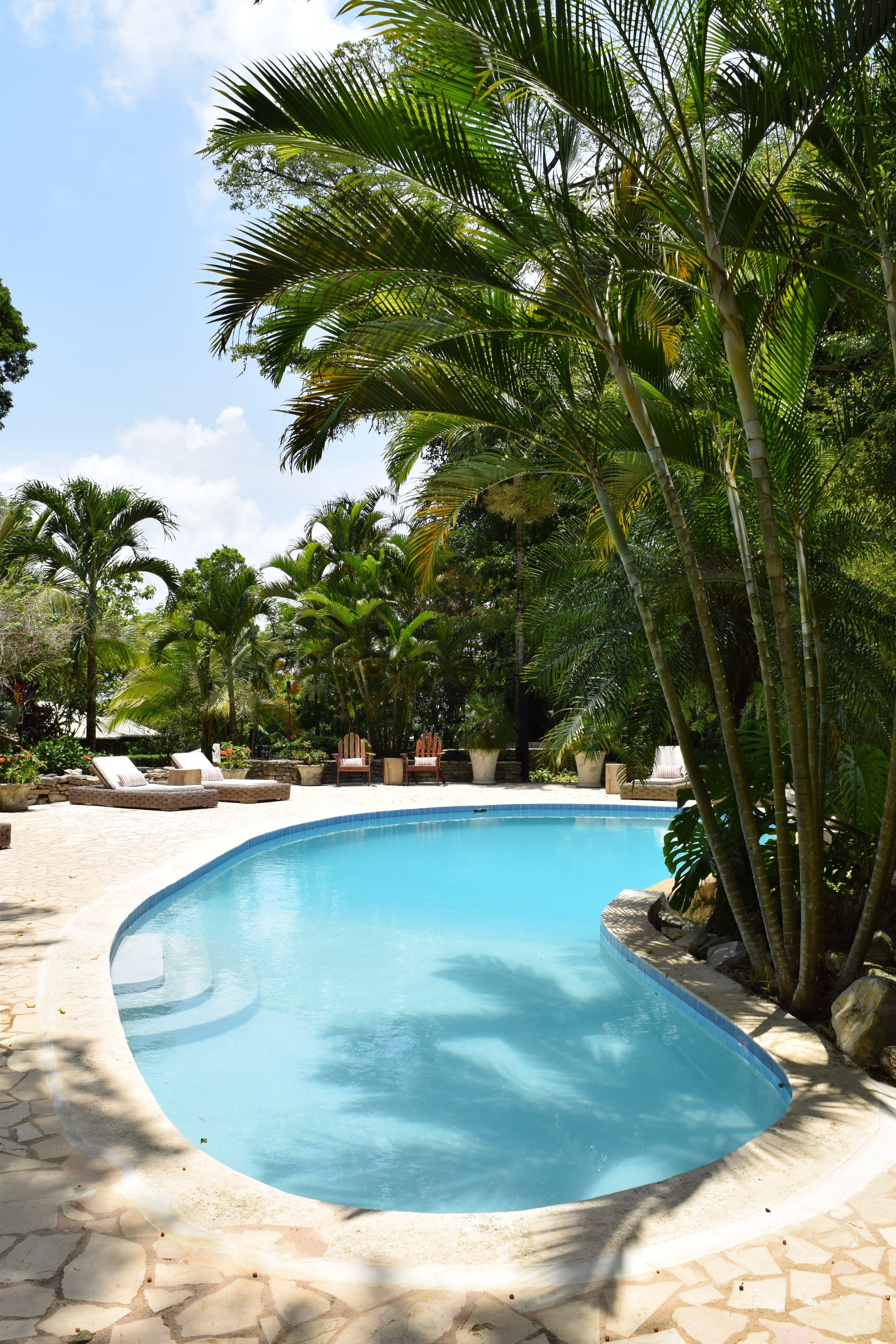 Copal Tree Lodge - Jungle lodge with organic farm and rainforest adventures
