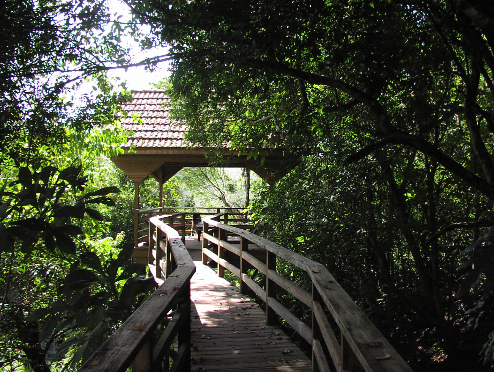 canopy bar walkway 2.png