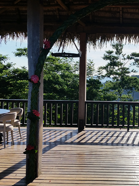 Copal Tree - Jungle Lodge