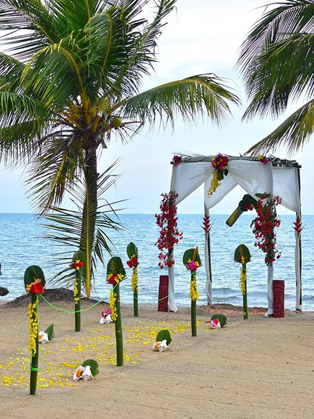 Hopkins Bay Resort - Beach Resort