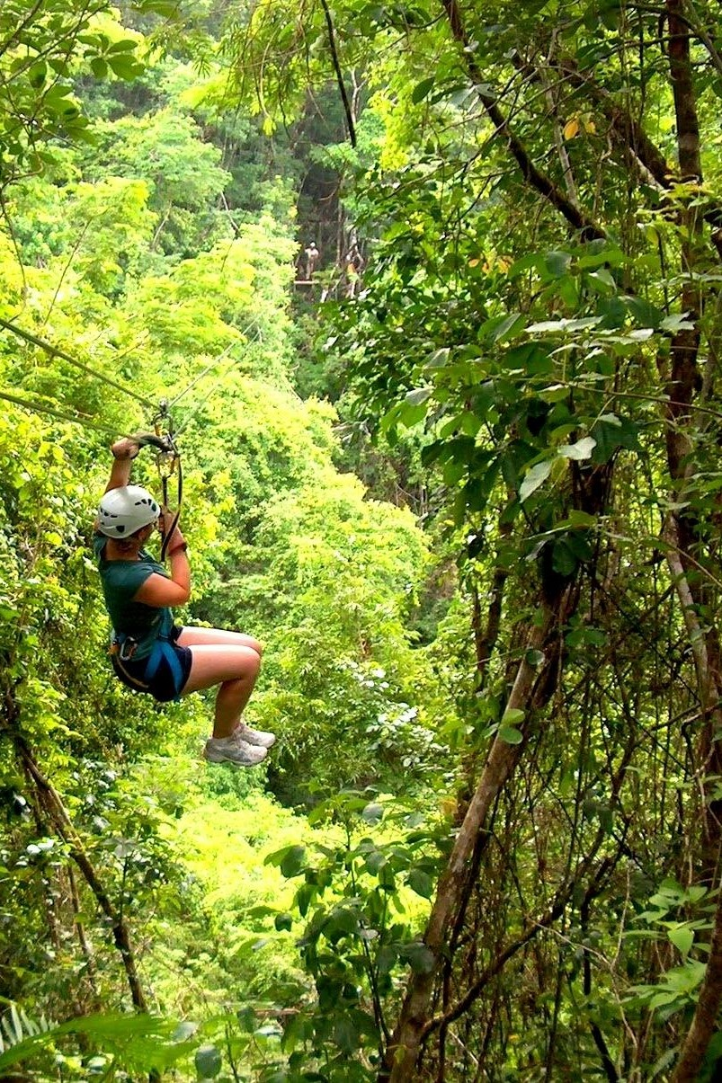 Jungle Adventures -