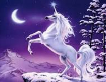 gratuitous image of unicorn.