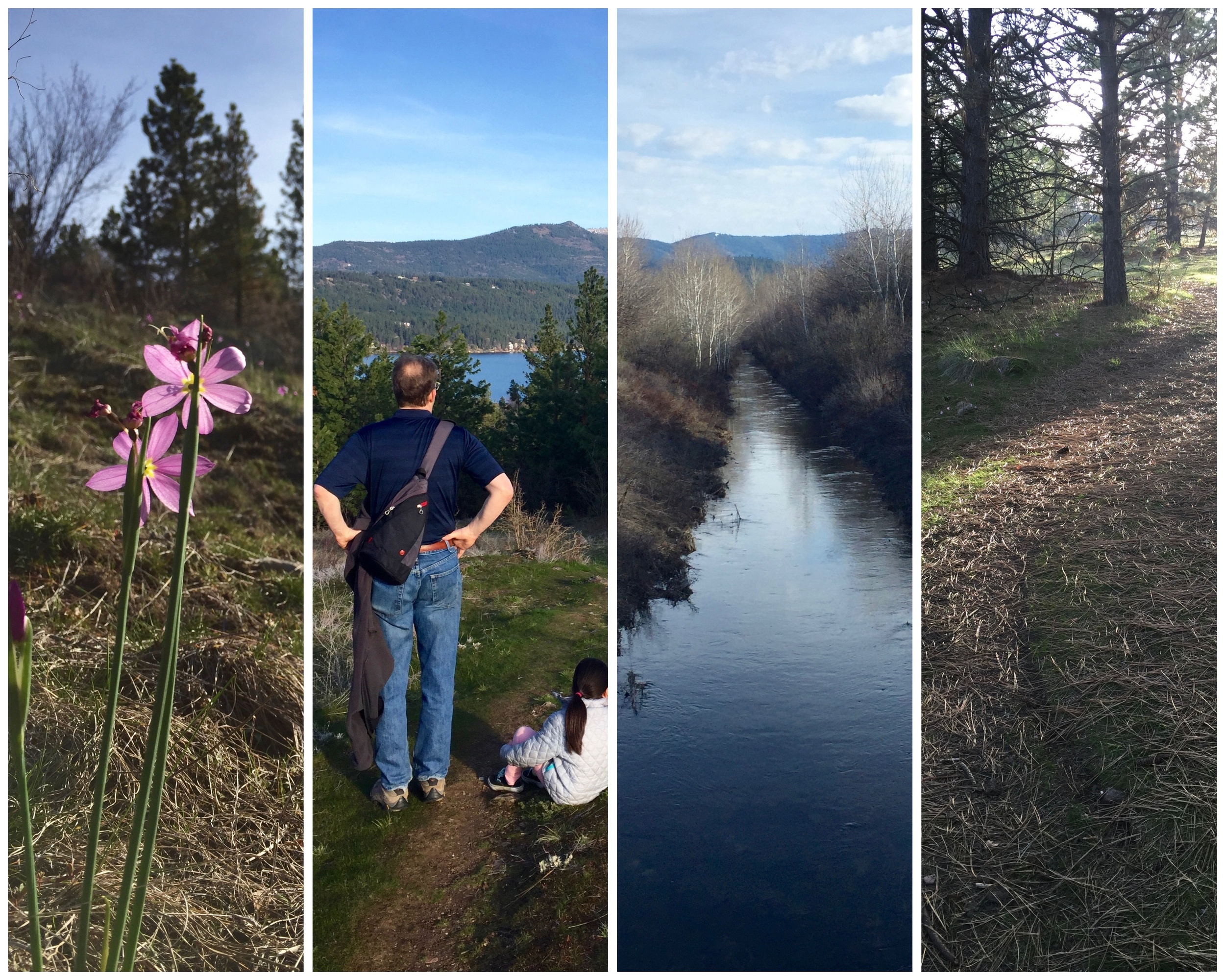 Scenes from our Saturday hike.