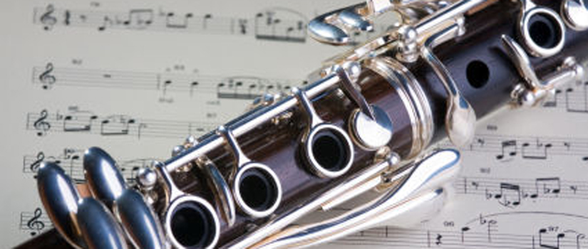 I loved band at Kenmore Junior High. In high school, my lack of practicing caught up with me and I ended up carrying a tuba in marching band, because I wasn't that good on my clarinet.