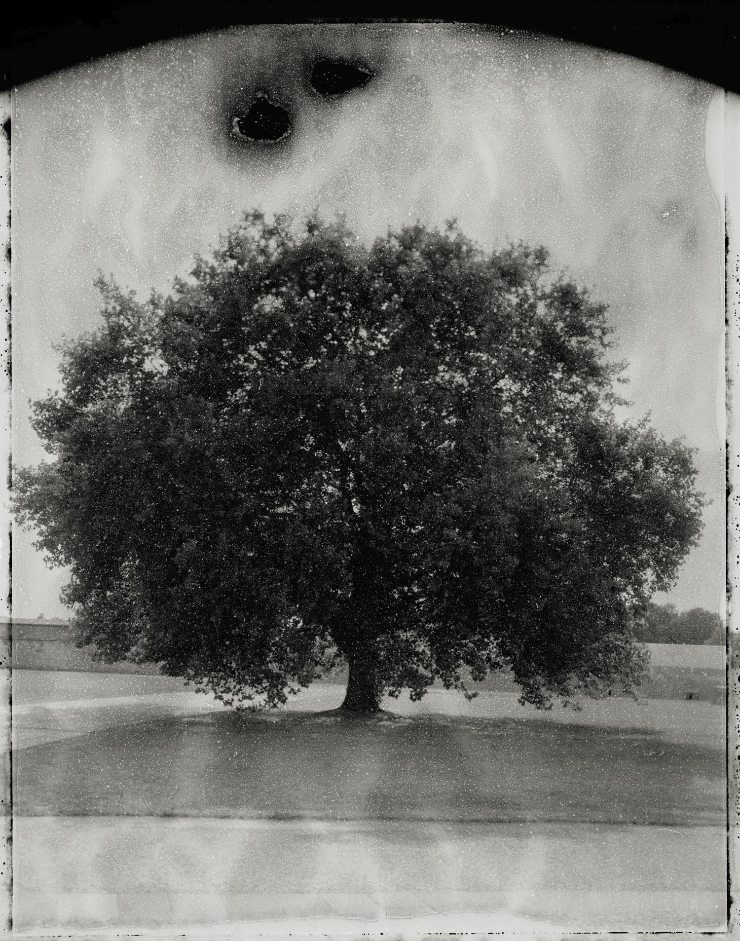 Panopticon05.jpg