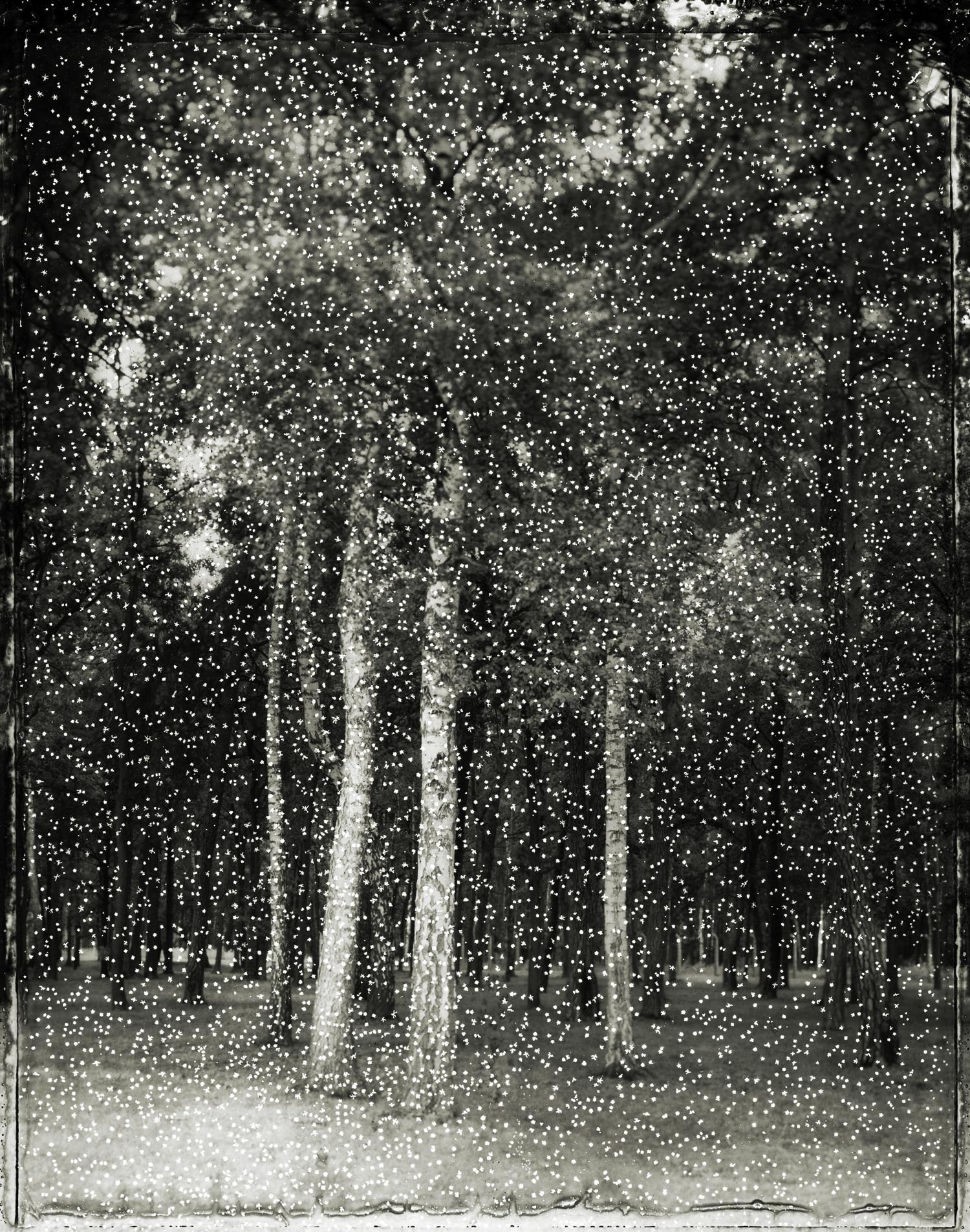 Panopticon17.jpg