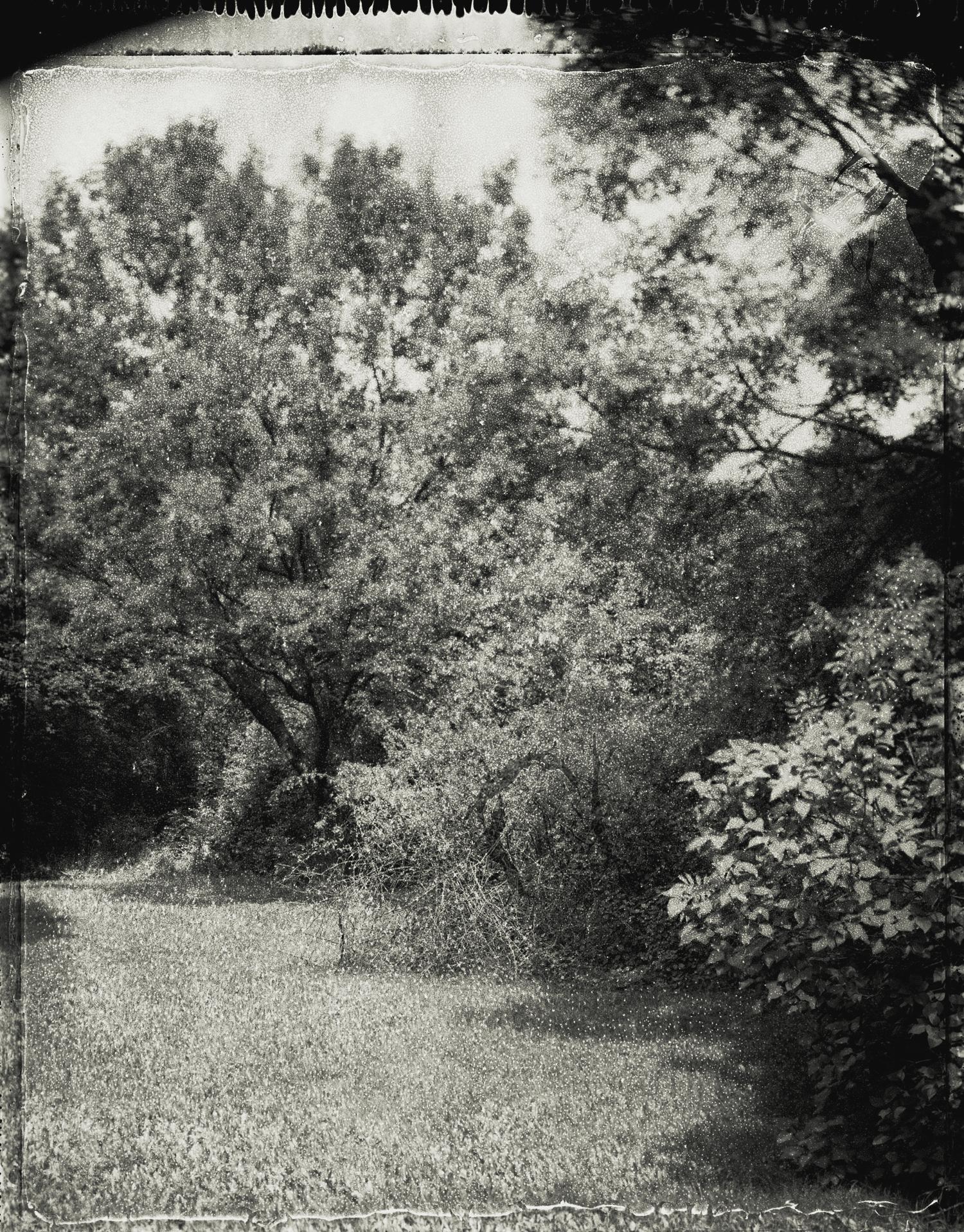 Panopticon19.jpg