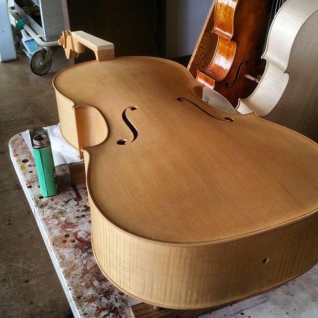 Cello Varnish.jpeg