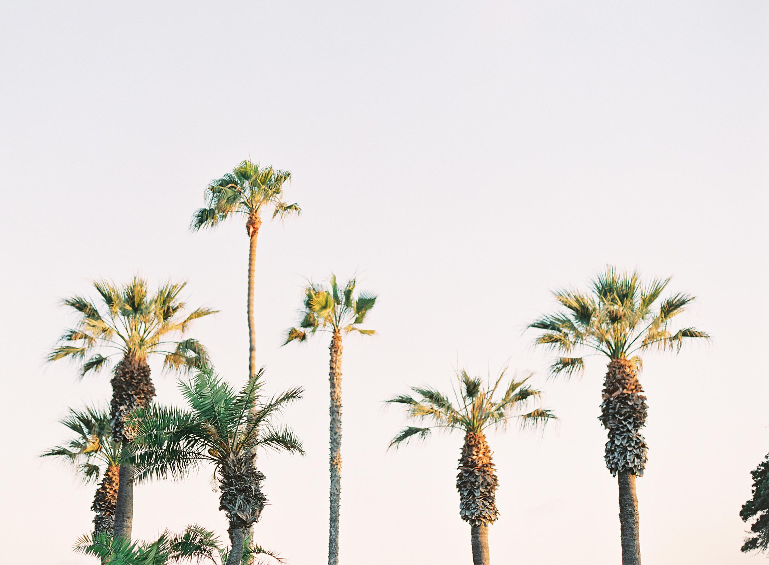 Laguna-Beach-Engagement-Film-Wedding-Orange-County-61.jpg