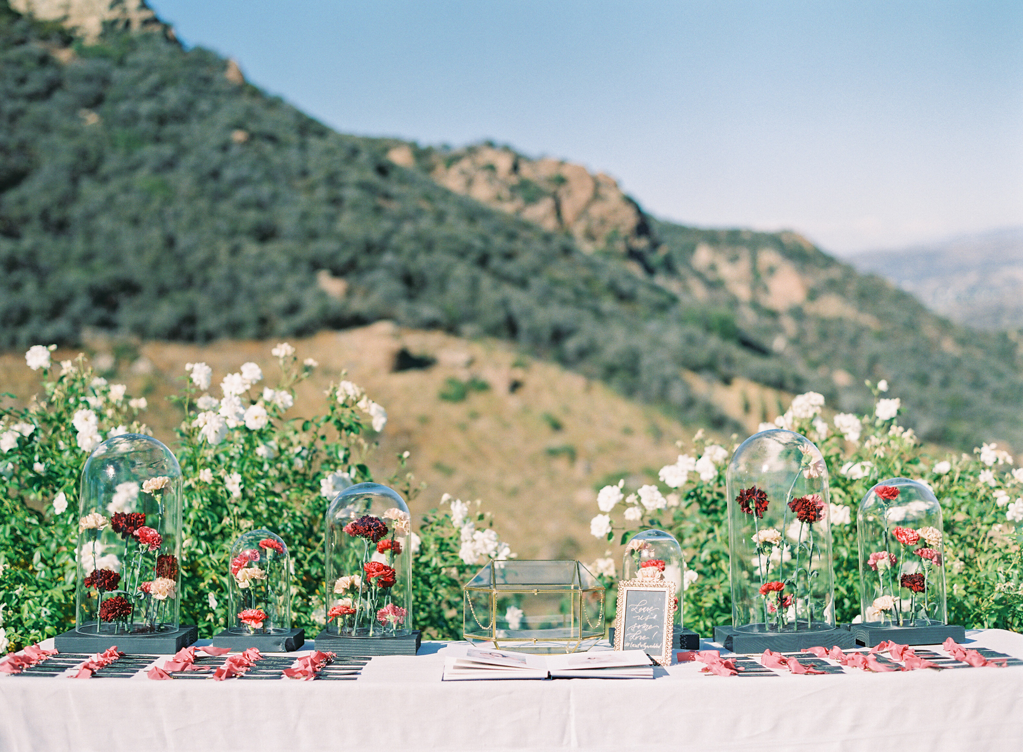Saddlerock-Ranch-Dome-Film-Wedding-22.jpg
