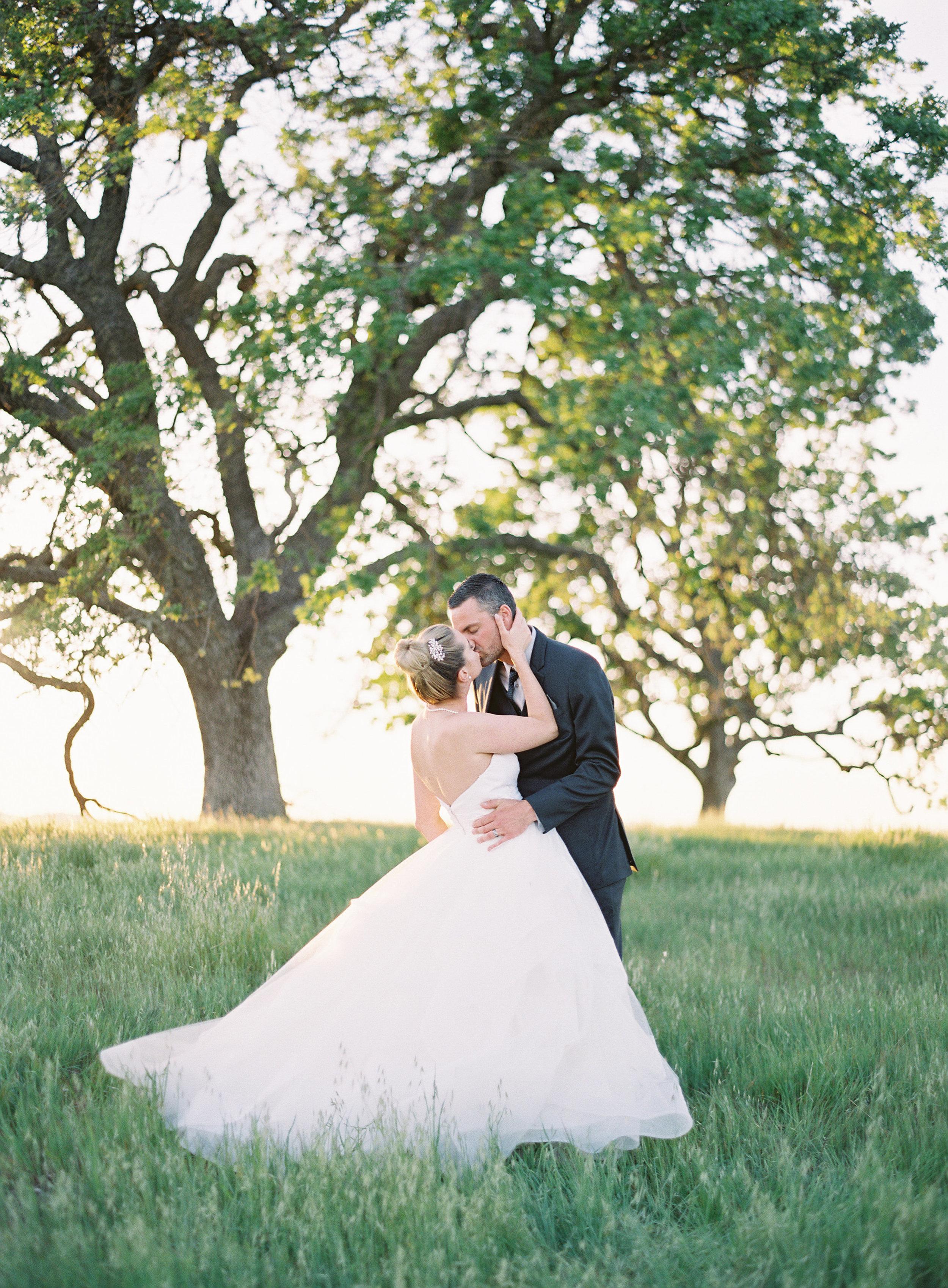 Paso-Robles-Wedding-Steven-Ashley-678.jpg