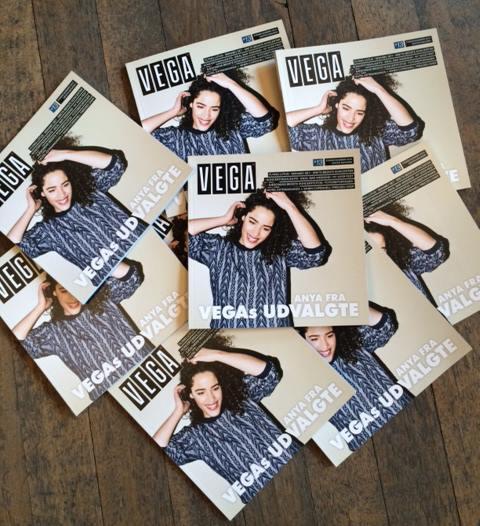 Photo courtesy of VEGA