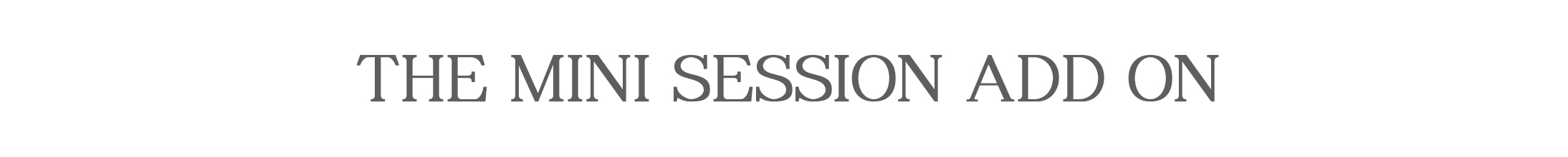 The mini session add on.jpg