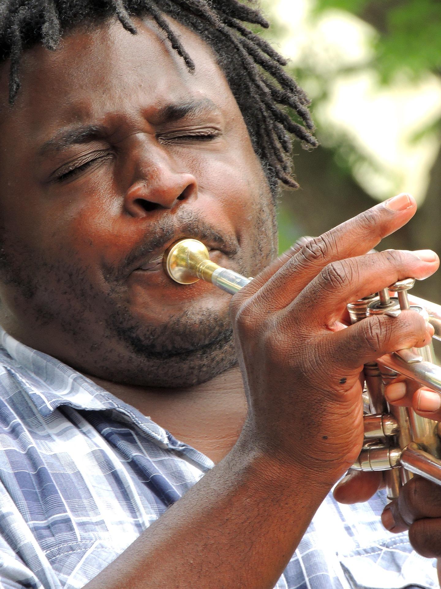 musician-2148871_1920.jpg