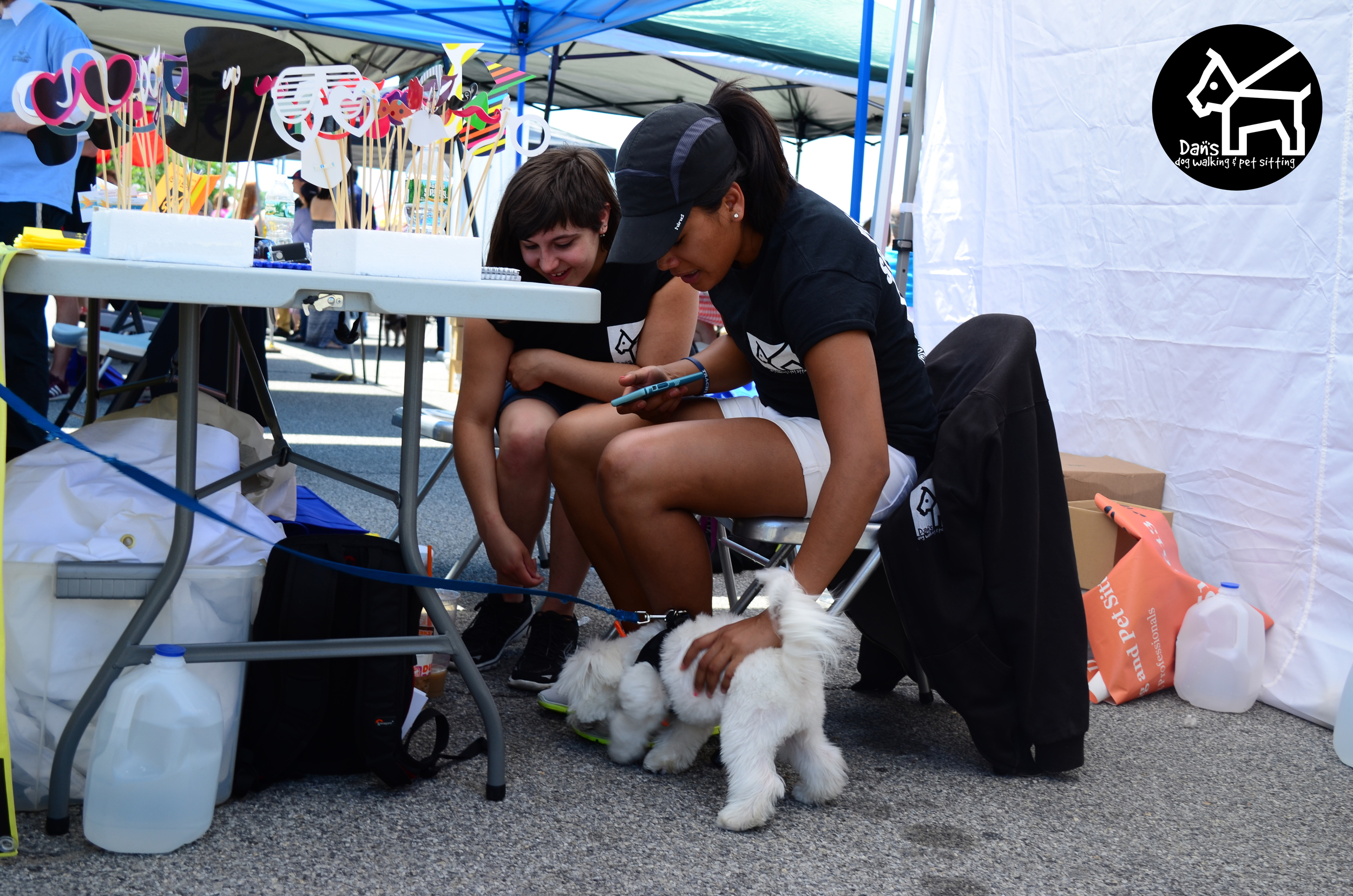 Lara and Becky making friends at Dan's Dog Walking and Pet Sitting Doggie Photo Booth at Harbor Fest 2015.jpg