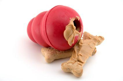 KONG toy with peanut butter treats