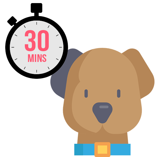 Each 30-minute visit includes a feeding and water change if needed. We can use this time to take your dog for a walk or playtime in the backyard, we are here for whatever you need!