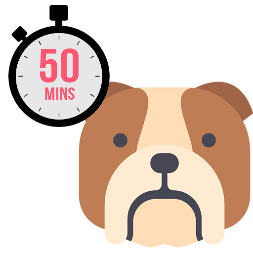 These 50 minute visits are perfect for high energy dogs! Each visit includes a feeding and water change. We can take your dog for a long walk, play time in the backyard or just hang out! The choice is yours!