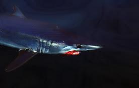 MAko Dark Fly.jpg
