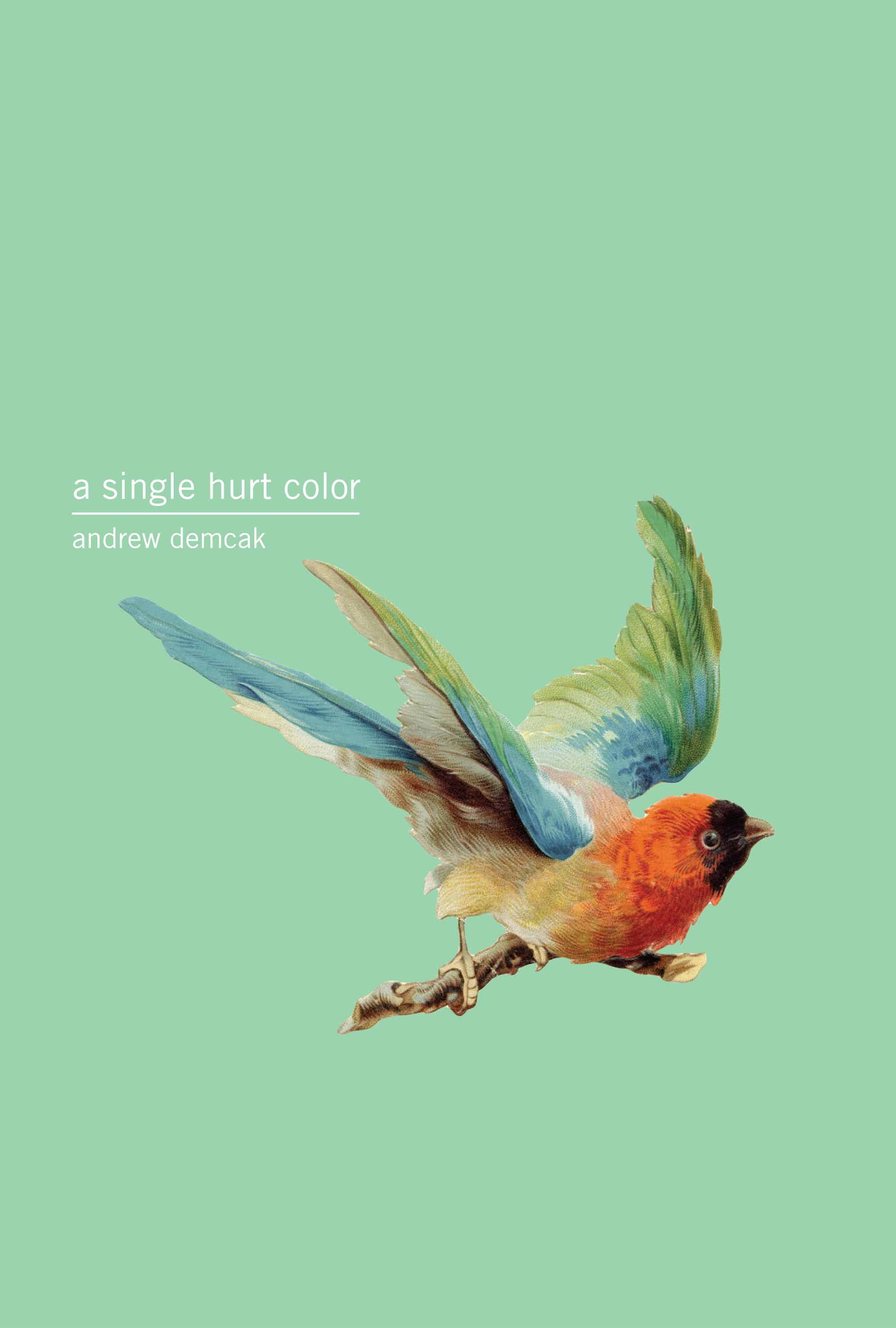 A Single Hurt Color Book Cover (Published)