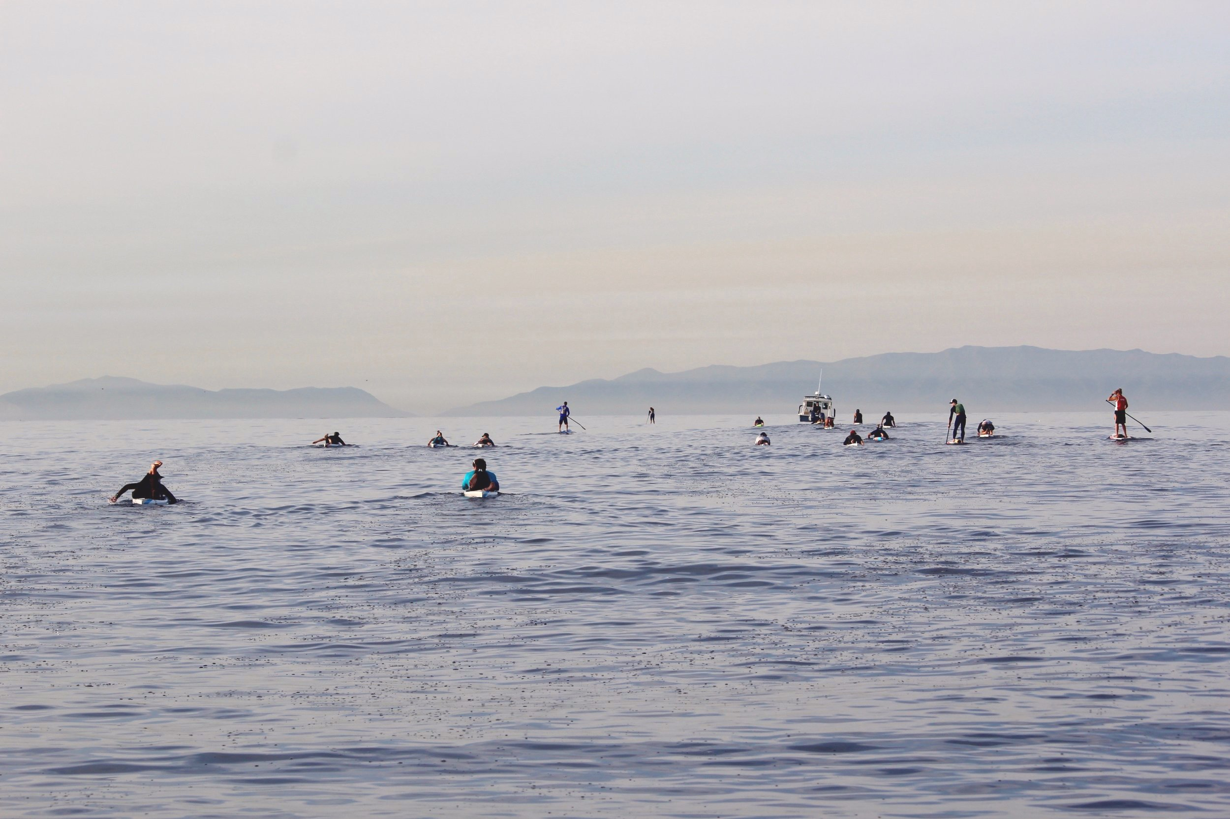 Crew paddle