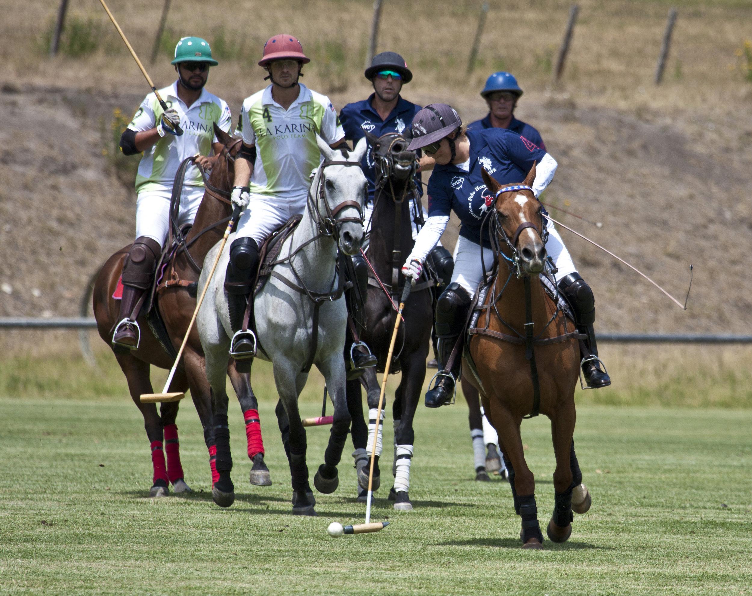 Melissa Ganzi of American Polo Horse drives dow.JPG
