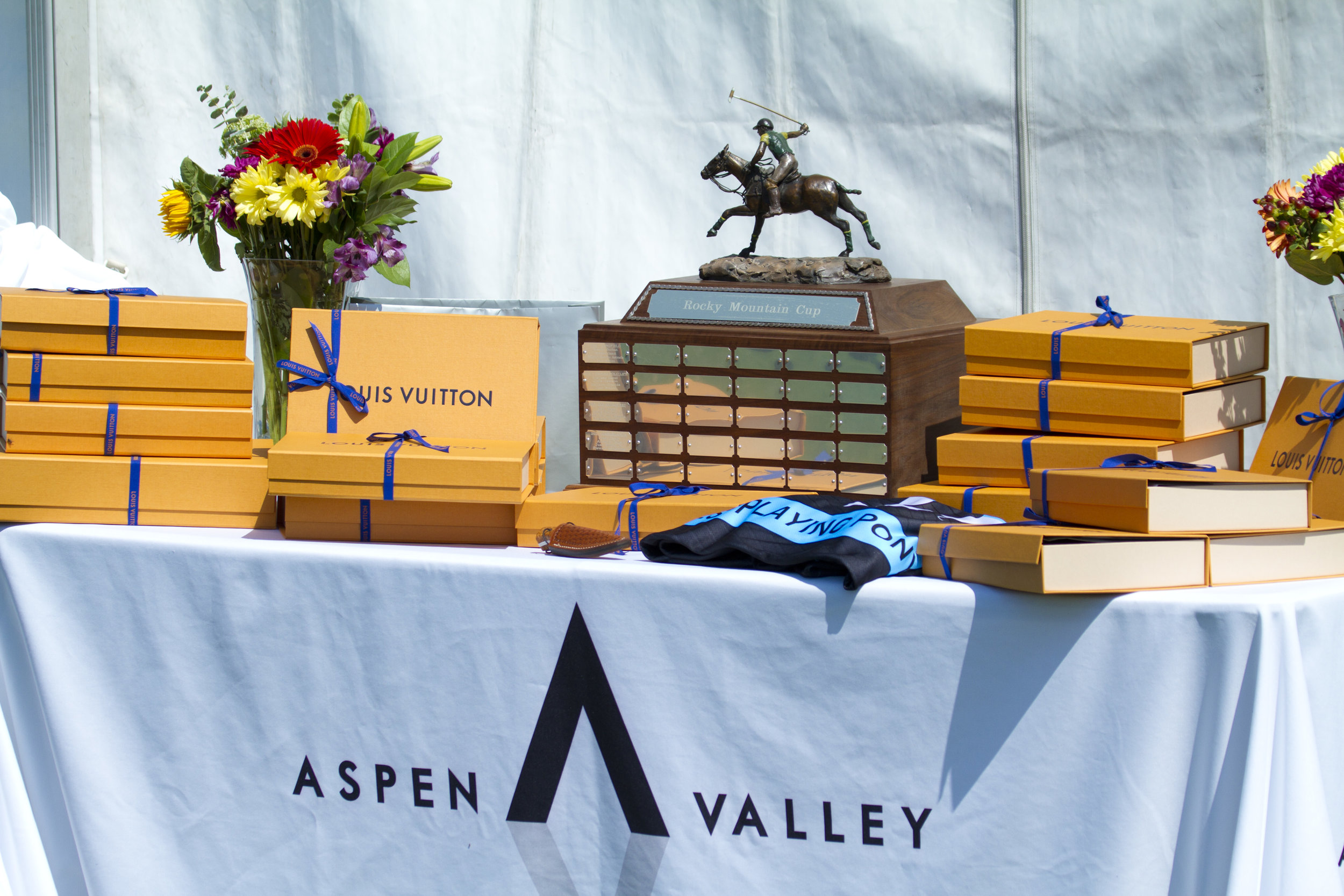 Awards table and much-coveted Rocky M.JPG