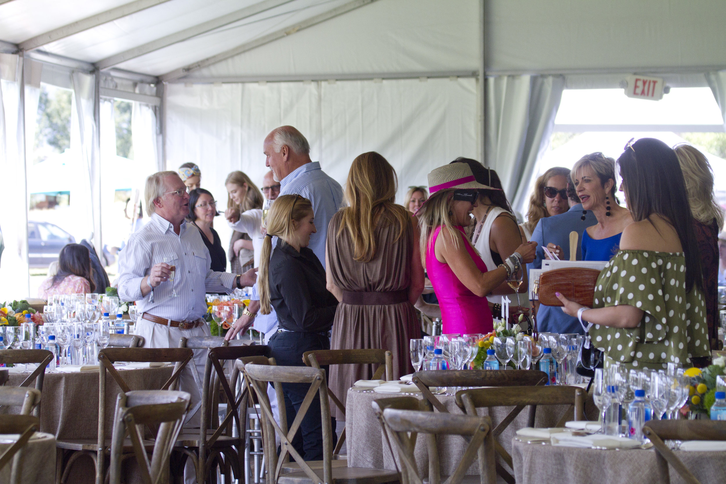 VIP guests enjoying great polo, food and .JPG