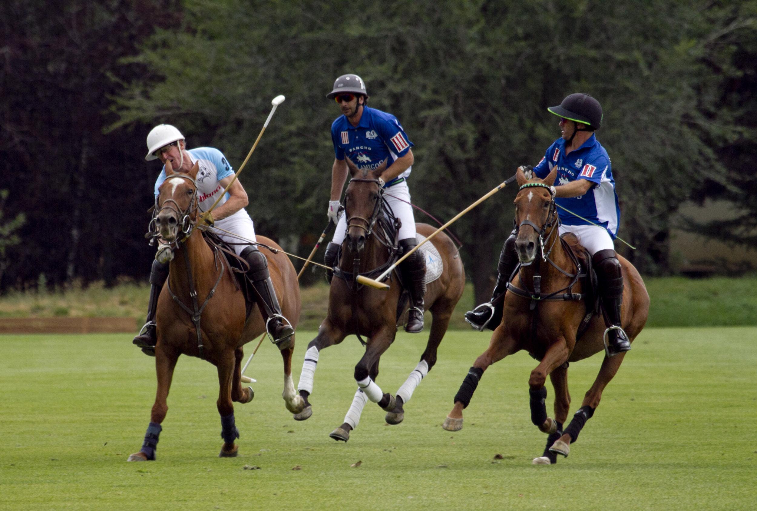 Los Amigos teammates Nacho Novillo Astrad.JPG