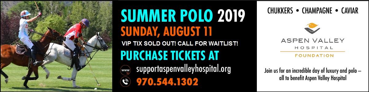 AVPC Summer Polo 2019 Banner-100 VERSION 2.jpg