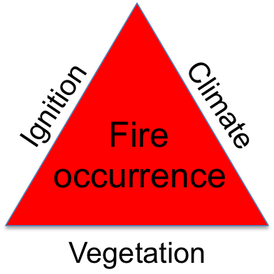 ecosystem fire triangle.png