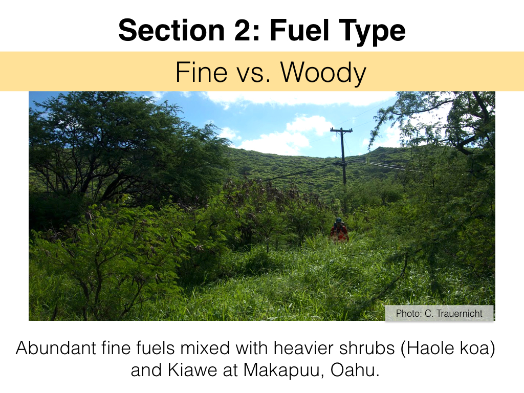 FuelsTMSlides.010.jpeg