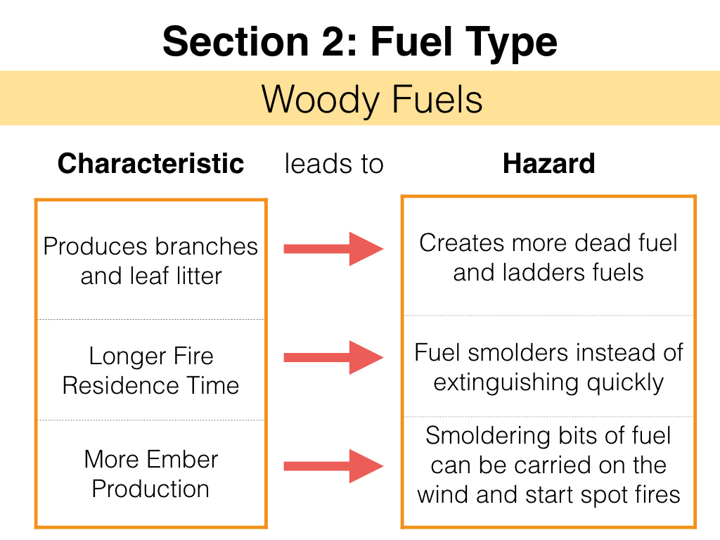 FuelsTMSlides.014.jpeg