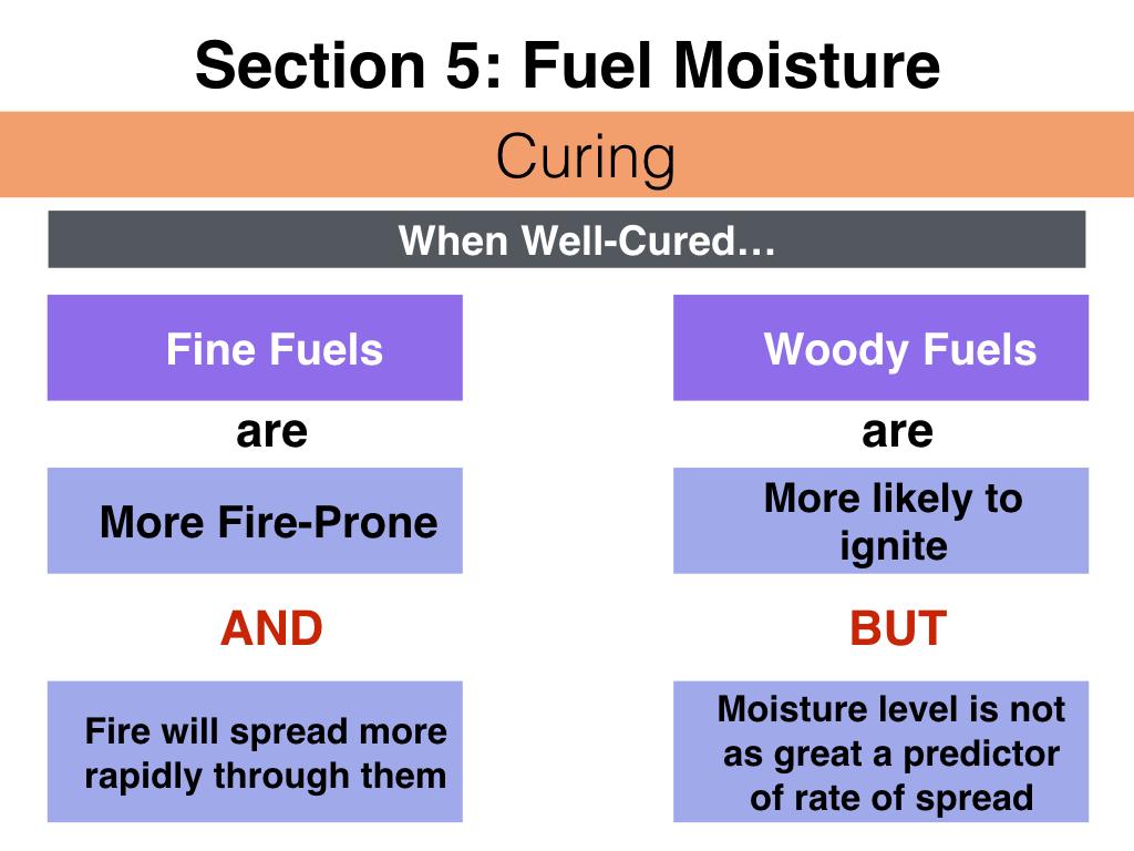 FuelsTMSlides.057.jpeg