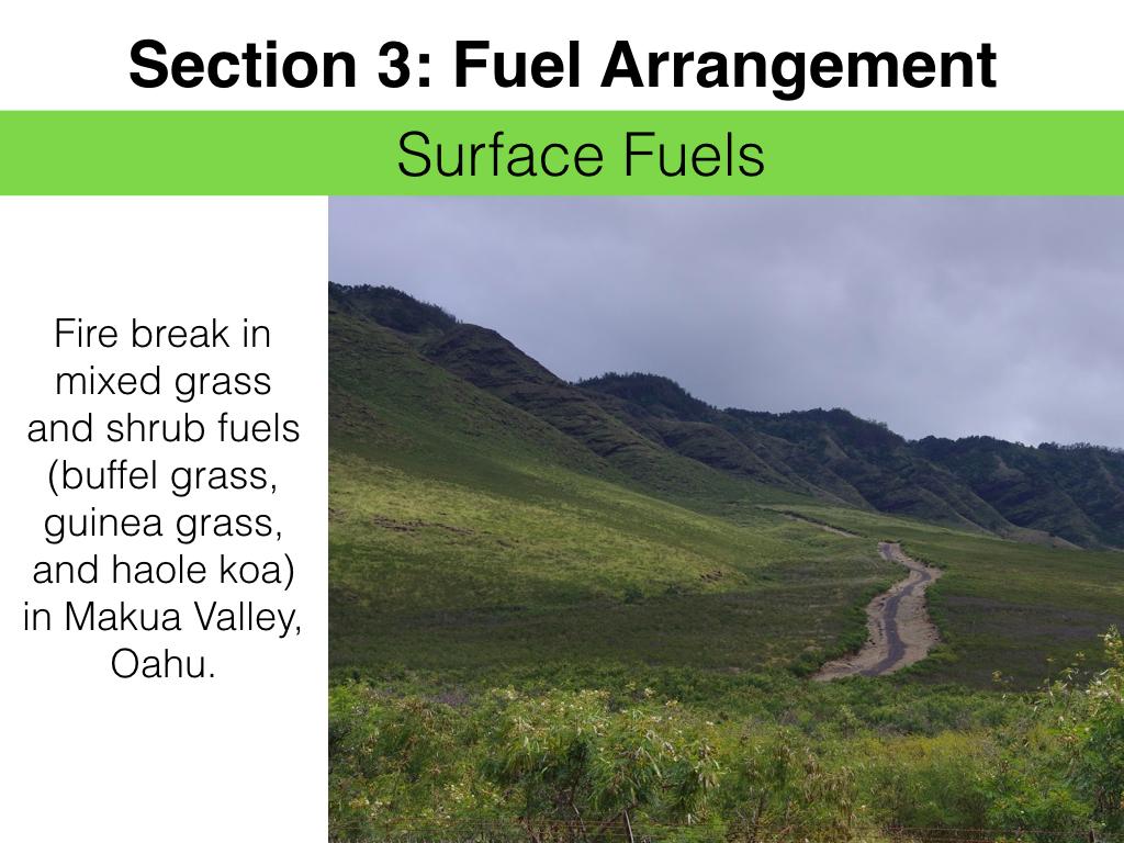 FuelsTMSlides.029.jpeg