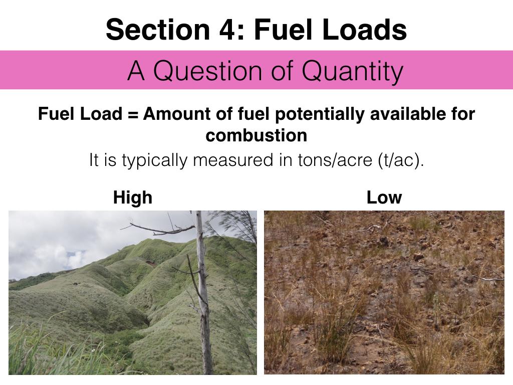 FuelsTMSlides.039.jpeg