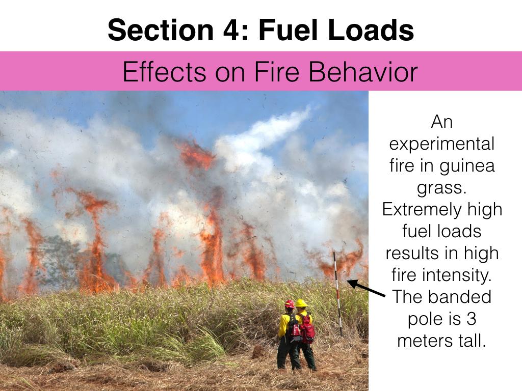 FuelsTMSlides.041.jpeg