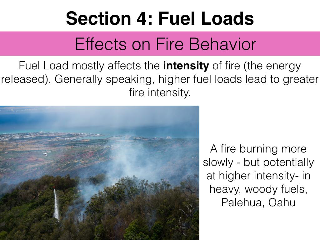 FuelsTMSlides.040.jpeg