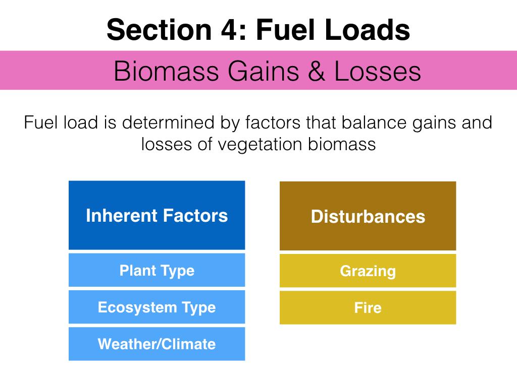 FuelsTMSlides.043.jpeg