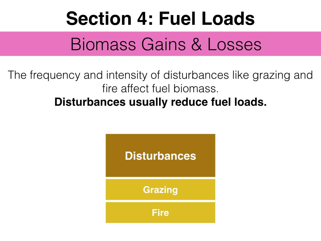 FuelsTMSlides.044.jpeg
