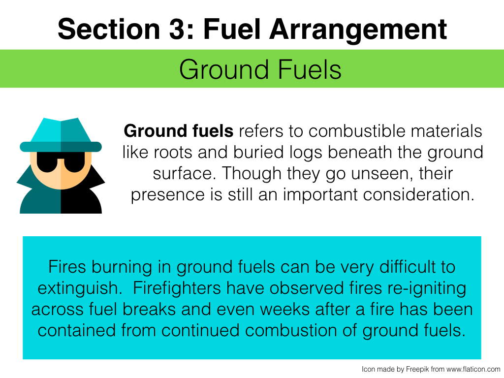 FuelsTMSlides.027.jpeg