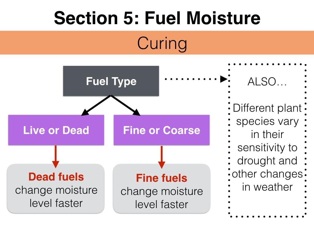 FuelsTM_Slides_11.4.16_Edits.051.jpeg