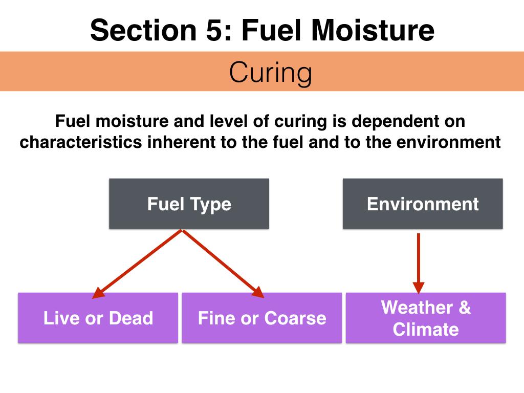 FuelsTM_Slides_11.4.16_Edits.050.jpeg