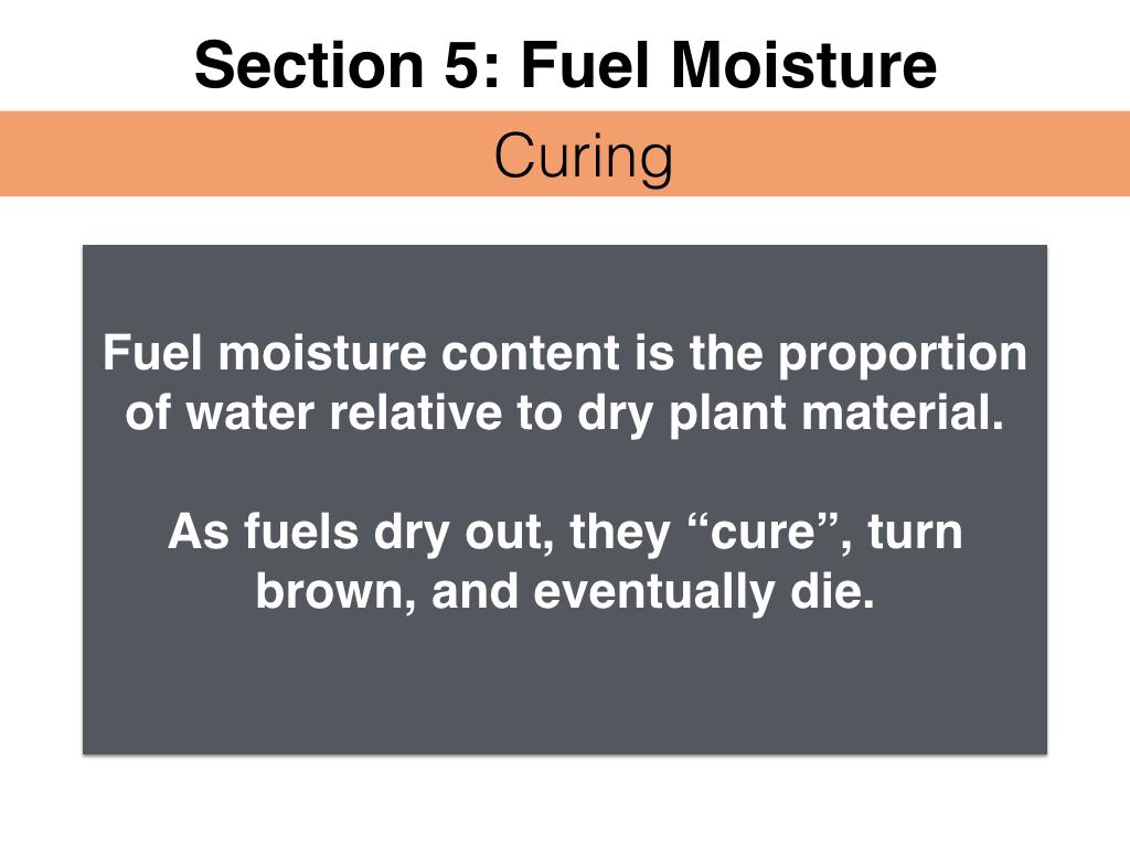 FuelsTM_Slides_11.4.16_Edits.046.jpeg